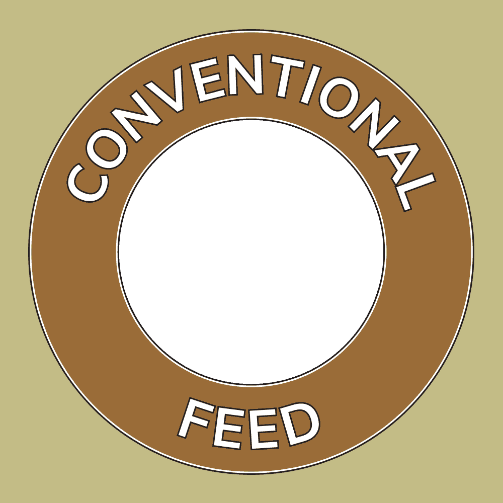 Conventional Feed Icon